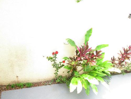 FOTO20 - Casa 3 quartos à venda Pechincha, Rio de Janeiro - R$ 480.000 - PR30410 - 21