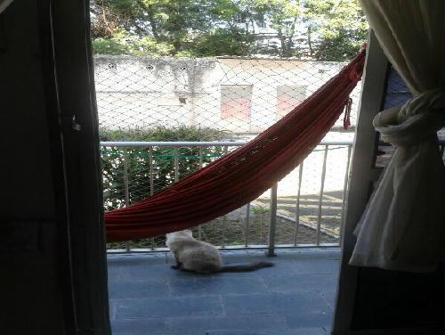 FOTO2 - Apartamento À VENDA, Taquara, Rio de Janeiro, RJ - PA20949 - 3