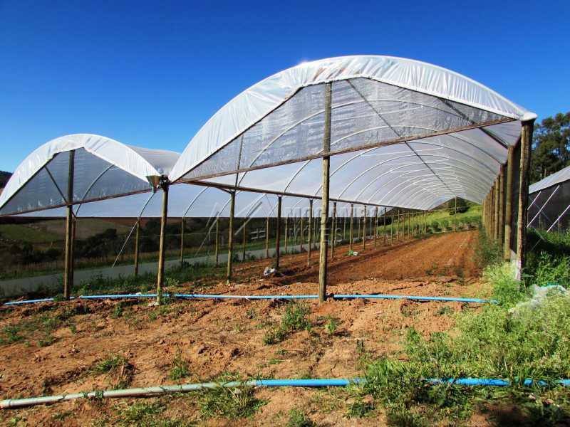 Estufas - Sítio 240000m² à venda Rodovia Dom Pedro I,Itatiba,SP - R$ 4.500.000 - FCSI40003 - 9