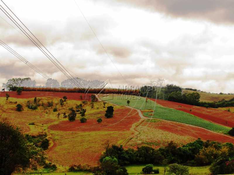 Area de plantio - Sítio 605000m² à venda Morungaba,SP - R$ 2.500.000 - FCSI20004 - 4