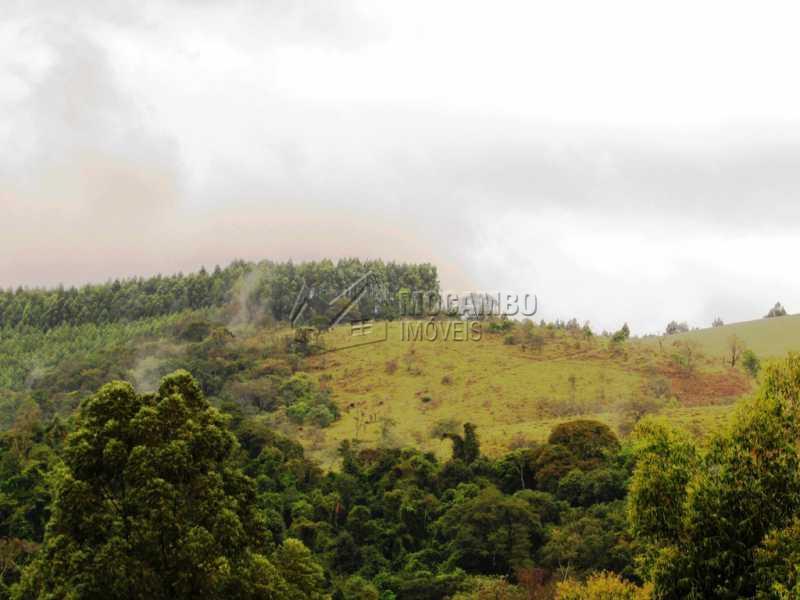 Mata - Sítio 605000m² à venda Morungaba,SP - R$ 2.500.000 - FCSI20004 - 6