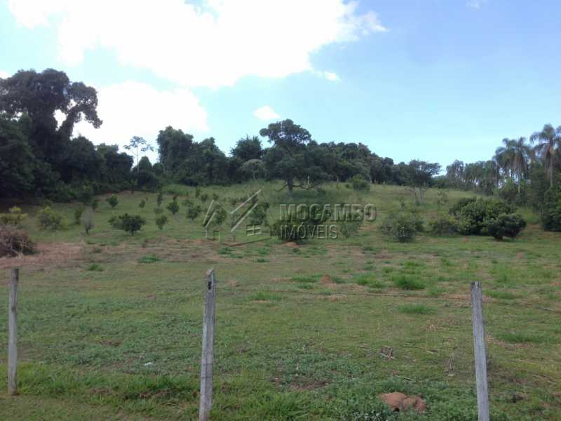 Pomar/Área Livre - Sítio 24000m² à venda Itatiba,SP - R$ 1.400.000 - FCSI60001 - 19