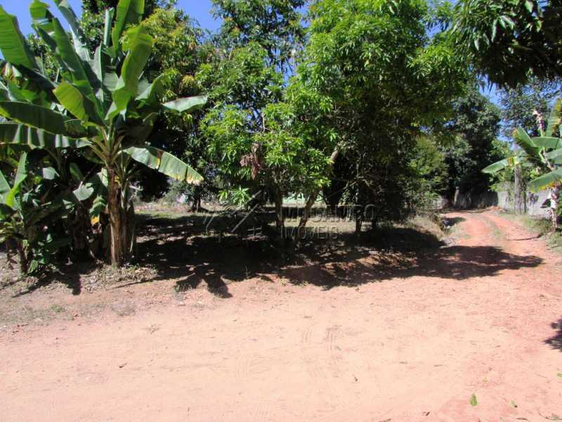 Pomar - Chácara 3548m² À Venda Itatiba,SP - R$ 800.000 - FCCH30097 - 12