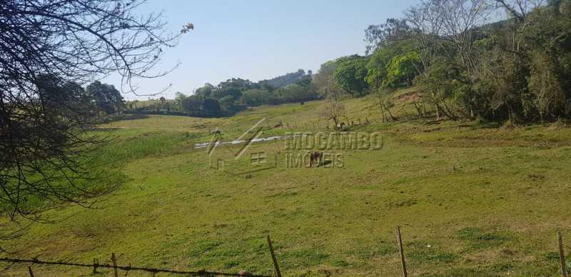 Pasto - Sítio Itatiba, Bairro dos Pintos, SP À Venda, 3 Quartos, 200000m² - FCSI30004 - 7