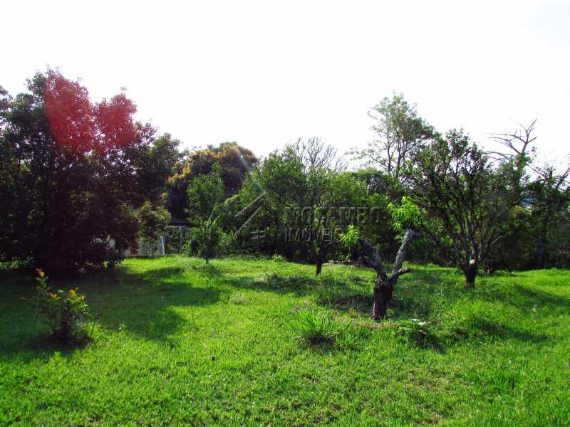 Pomar formado - Casa Para Alugar no Condomínio Itaembú - Sítio da Moenda - Itatiba - SP - FCCN30361 - 15