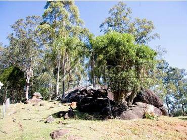Área Externa - Fazenda 968000m² à venda Morungaba,SP - R$ 13.000.000 - CF90001 - 14