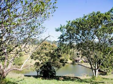 Lago - Fazenda 968000m² à venda Morungaba,SP - R$ 13.000.000 - CF90001 - 5
