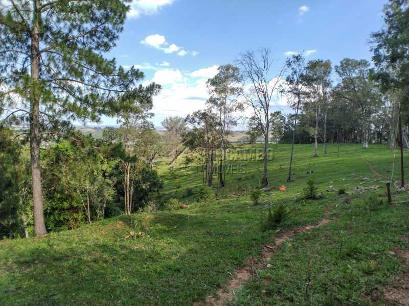 Pastagem ao lado da sede - Sítio 145200m² à venda Itatiba,SP - R$ 1.900.000 - FCSI20013 - 19