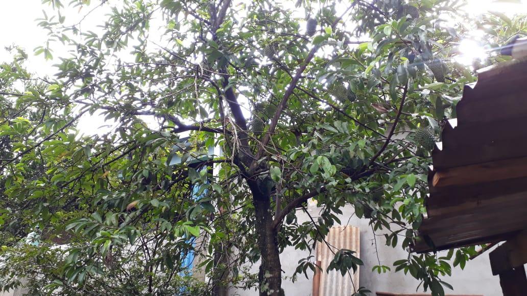 FOTO12 - Casa à venda Rua dos Tucanos,American Parque, Aparecida de Goiânia - R$ 135.000 - CA0272 - 14