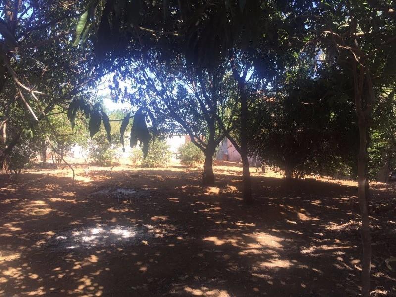 FOTO0 - Chácara à venda Rua H-107,Cidade Vera Cruz, Aparecida de Goiânia - R$ 300.000 - CH0001 - 1