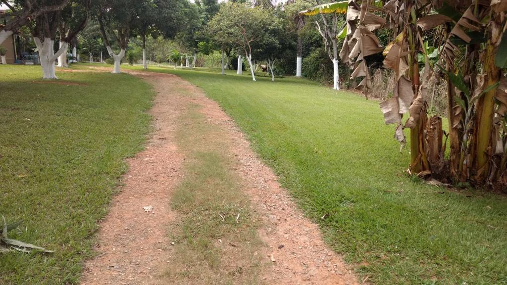FOTO2 - Chácara para venda e aluguel Rua Geny de Barros Loyola,Terra Prometida, Aparecida de Goiânia - R$ 800.000 - CH0010 - 4