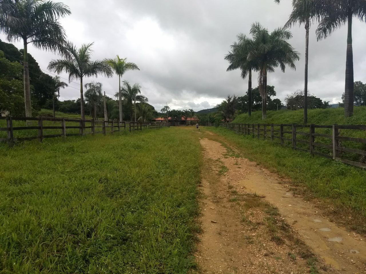 FOTO0 - Fazenda à venda Rua Logradouro Sem Nome,Zona Rural, Vila Propício - R$ 10.000.000 - FA0001 - 1