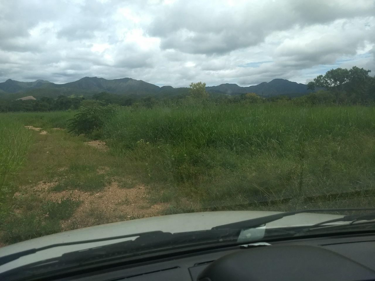 FOTO15 - Fazenda à venda Rua Logradouro Sem Nome,Zona Rural, Vila Propício - R$ 10.000.000 - FA0001 - 17