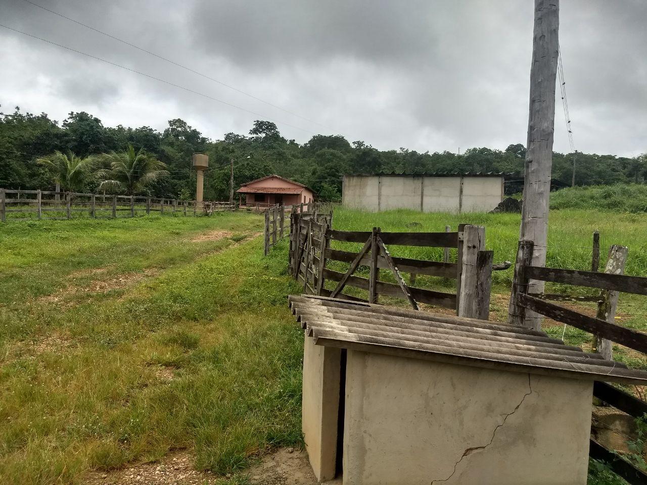 FOTO23 - Fazenda à venda Rua Logradouro Sem Nome,Zona Rural, Vila Propício - R$ 10.000.000 - FA0001 - 25