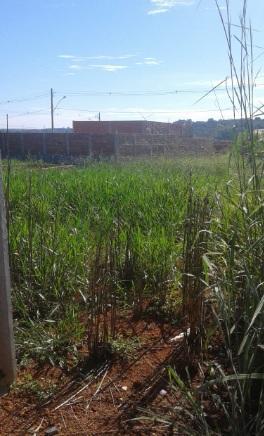 FOTO2 - Terreno à venda Rua Lambari,Jardim Isaura, Aparecida de Goiânia - R$ 11.000 - TE0033 - 3
