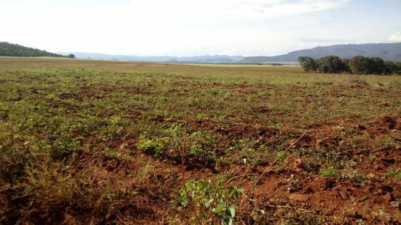 WhatsApp Image 2021-09-13 at 0 - Fazenda à venda Zona Rural, Vila Propício - R$ 40.000.000 - VIFA00001 - 9