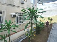 FOTO 2 - Apartamento 2 quartos à venda Quintino Bocaiúva, Rio de Janeiro - R$ 250.000 - PA20343 - 3