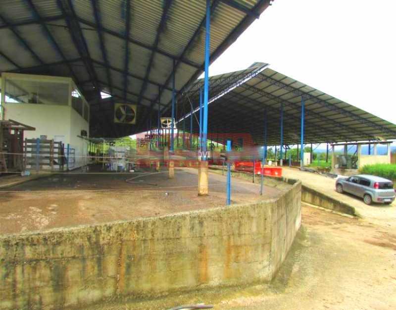 F243_9 - EXCELENTE FAZENDA COM 32 ALQUEIRES EM CACHOEIRA DE MACACU RJ !!!!!! - GAFA00018 - 6