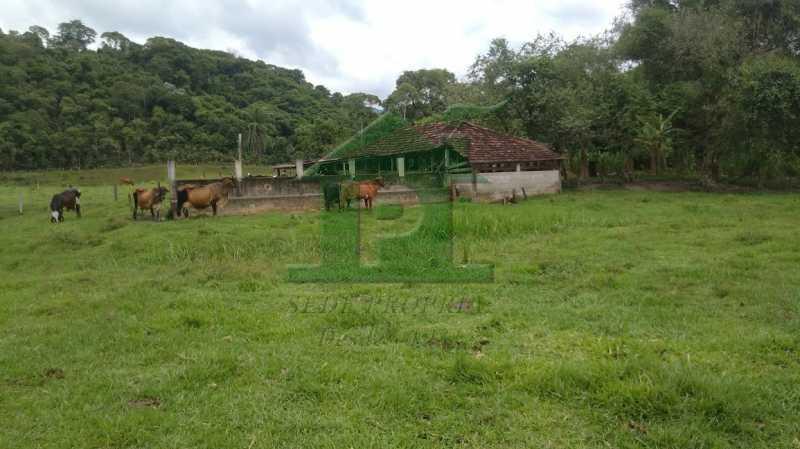 P_20201112_110516 - Sítio 310000m² à venda Cachoeiras de Macacu,RJ - R$ 1.100.000 - VLSI20001 - 3