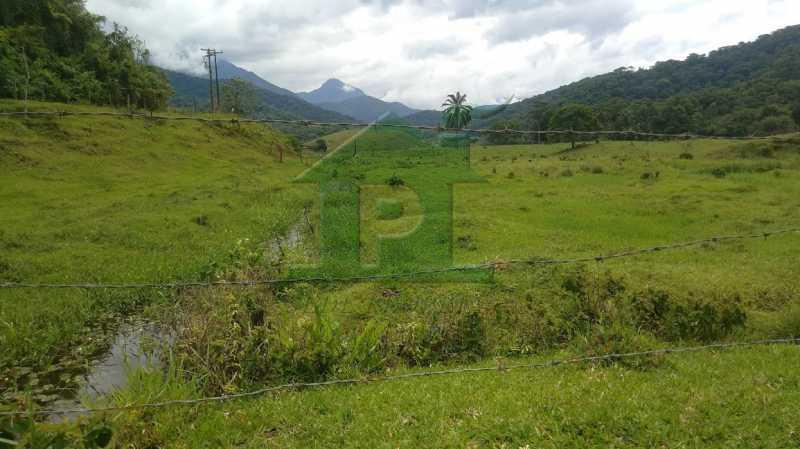 P_20201112_104656 - Sítio 310000m² à venda Cachoeiras de Macacu,RJ - R$ 1.100.000 - VLSI20001 - 22