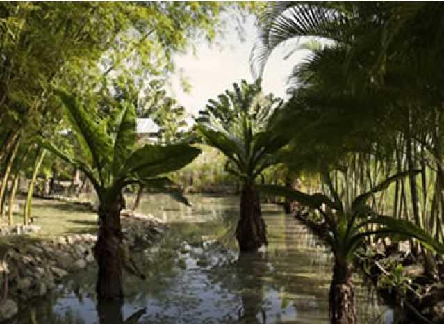 Condomínio - Lago - Fachada - Condomínio Residencial Pedra Verde - 5 - 11