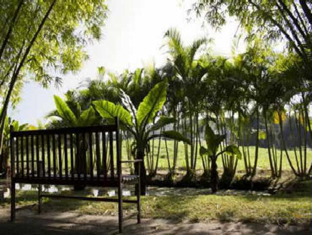 FOTO8 - Terreno 998m² à venda Ubatiba, Maricá - R$ 250.000 - MAUF00008 - 9